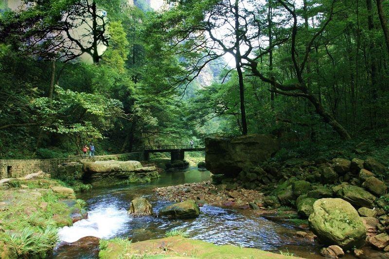 金鞭溪景区   金鞭溪是张家界的黄金旅游区,全长5700米,溪水发源